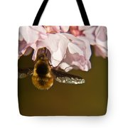 Bee Fly Feeding 5 Tote Bag