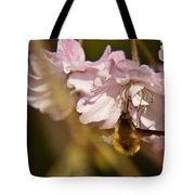 Bee Fly Sucking Nectar 1 Tote Bag