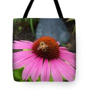 Bee Gathering Pollen On Cone Flower Tote Bag