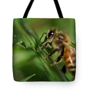 Bee In Green Tote Bag
