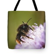 Bee In Pollen Tote Bag