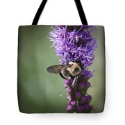 Bee On Gayfeather Squared 1 Tote Bag