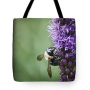 Bee On Gayfeather Tote Bag
