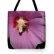 Bee On Rose Of Sharon Tote Bag