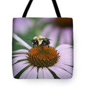 Bee Resting Squared Tote Bag