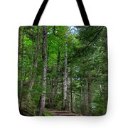 Beech Mountain Trail Acadia Tote Bag