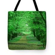 Beechwood Grove Tote Bag