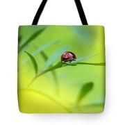 Beetle Butt Tote Bag