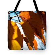 Before The Leaves Fall Tote Bag
