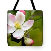 Being Fruitful Tote Bag