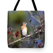 Being Nosey Tote Bag