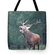 Bellowing Red Deer Stag Tote Bag