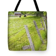 Belted Galloway Cows Farm Rockport Maine Tote Bag