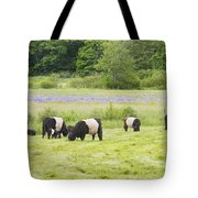 Belted Galloway Cows Pasture Rockport Maine Photograph Tote Bag