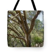 Bench And Tree In Cambria Tote Bag
