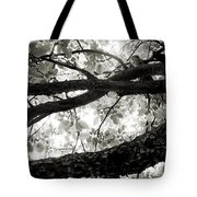 Beneath The Old Apple Tree Tote Bag