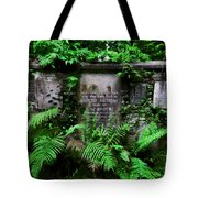 Beneath This Stone  Tote Bag