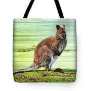 Bennets Wallaby  Tote Bag