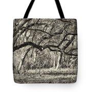 Bent Trees Sepia Toned Tote Bag
