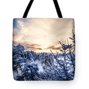 Bergen Winter Tote Bag