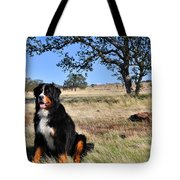 Bernese Mountain Dog In California Chaparral Tote Bag