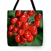 Berry Brilliant Tote Bag