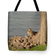 Bethany Lakes Duck Tote Bag