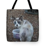 Betty Davis Eyes Tote Bag