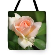 Betty White Rose Tote Bag