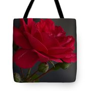 Betty's Red Rose II  Tote Bag