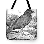 Bewick: Raven Tote Bag by Granger