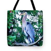Big Bird - Great Blue Heron Tote Bag