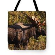 Big Bull Tote Bag