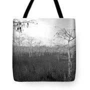 Big Cypress Winter Tote Bag