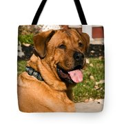 Big Dog Tote Bag