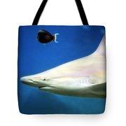 Big Fish Little Fish Tote Bag