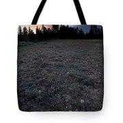 Big-headed Clover Sunset Tote Bag