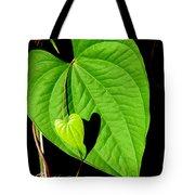 Big Heart Little Heart Tote Bag