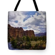 Big Horn National Forest Tote Bag