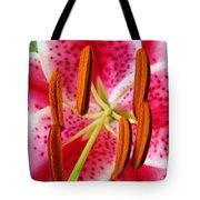 Big Lily Flower Art Prints Pink Lilies Floral Tote Bag