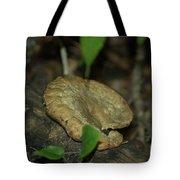 Big Old Mushroom Tote Bag