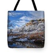 Big Springs Tote Bag
