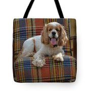 Bingo And His Chair Tote Bag