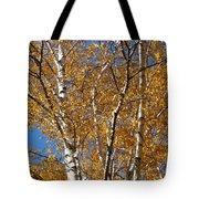 Birch Beauty Tote Bag
