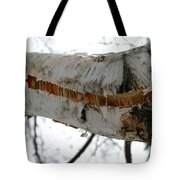 Birch Damaged In Ice Storm Tote Bag