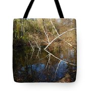 Birch Eye Tote Bag
