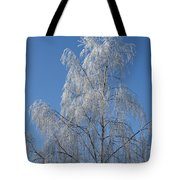 Birch In Frost. Tote Bag