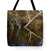 Birch Lake Reflections Tote Bag