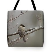 Bird - Eastern Phoebe - Very Contented Tote Bag