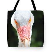 Bird Eyes Tote Bag